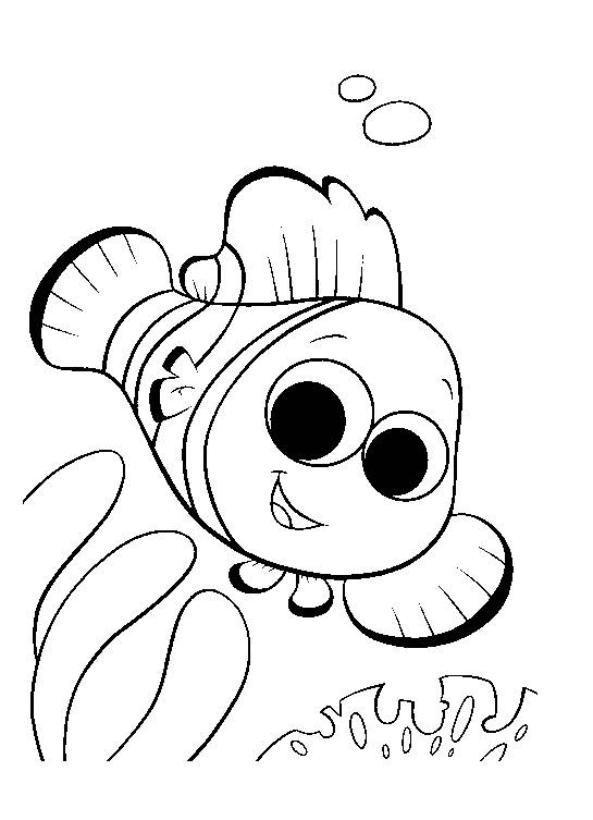 Free coloring and drawings Fish clown Nemo Coloring page