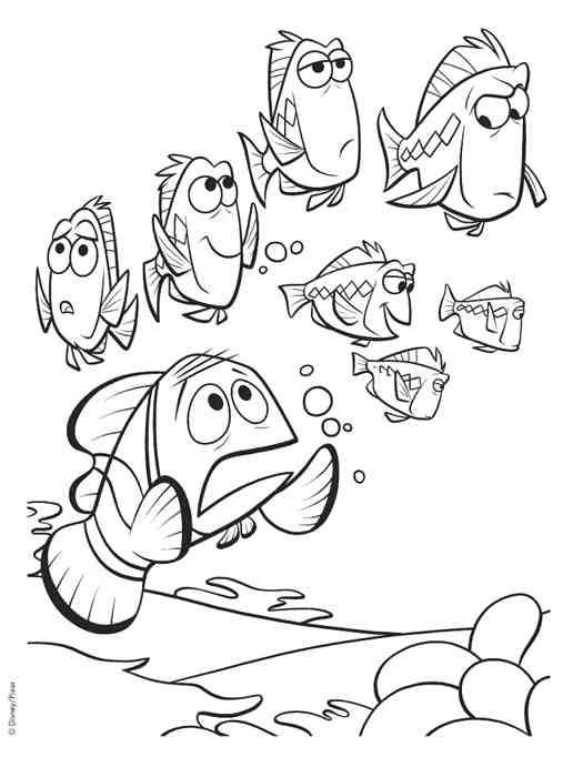 Free coloring and drawings Marin seeks Nemo Coloring page