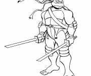 Coloring pages Ninjago tortoise