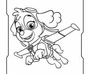 Coloring pages Paw Patrol Stella