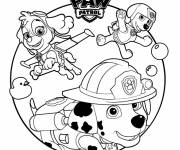 Coloring pages Paw Patrol Stella, Marcus and Zuma