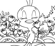 Coloring pages tweety smells a rose