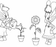 Coloring pages The Zou water the flowers