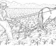 Coloring pages Farmer plows the land