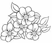 Coloring pages Florist free