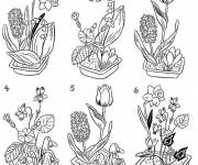 Coloring pages Florist in black and white