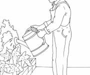 Coloring pages Gardener and flowers online