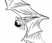 Coloring pages Bat Vampire
