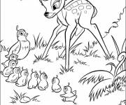 Coloring pages Bambi and Mrs. Quail