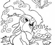 Coloring pages Panpan discovers a butterfly