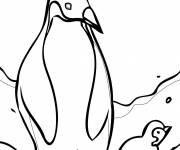 Coloring pages Club Penguin in black and white