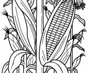 Coloring pages Agriculture in black