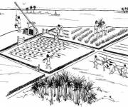 Coloring pages Agriculture in China