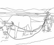 Coloring pages Chinese farmer