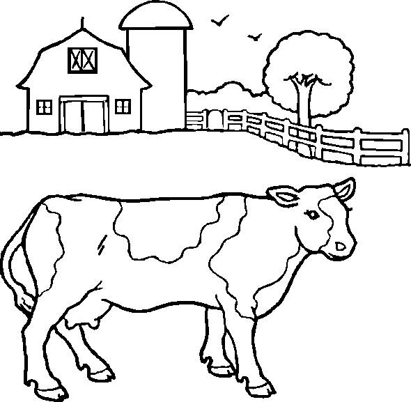 Free coloring and drawings Farm Cow Coloring page