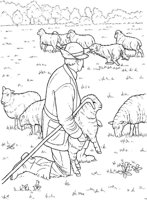 Free coloring and drawings Farmer and his sheep Coloring page