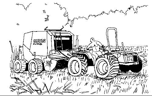 Free coloring and drawings Forage Landscape in the Fields Coloring page