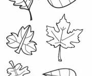 Coloring pages Leaves in autumn to cut