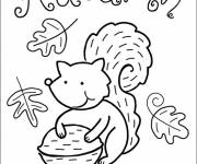 Coloring pages Squirrel and Autumn