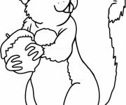 Coloring pages Squirrel and Fruit preferable