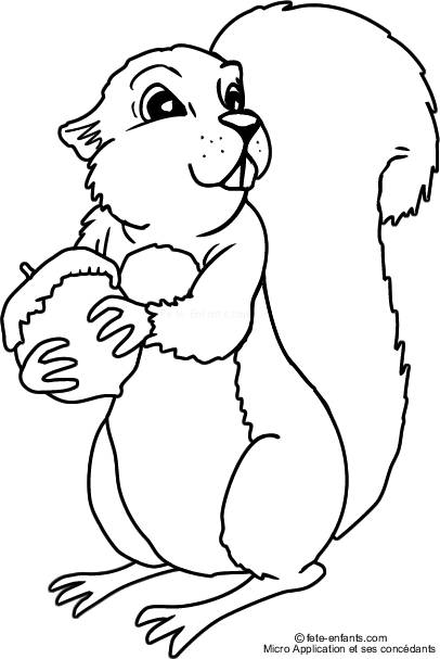 Free coloring and drawings Squirrel and Fruit preferable Coloring page
