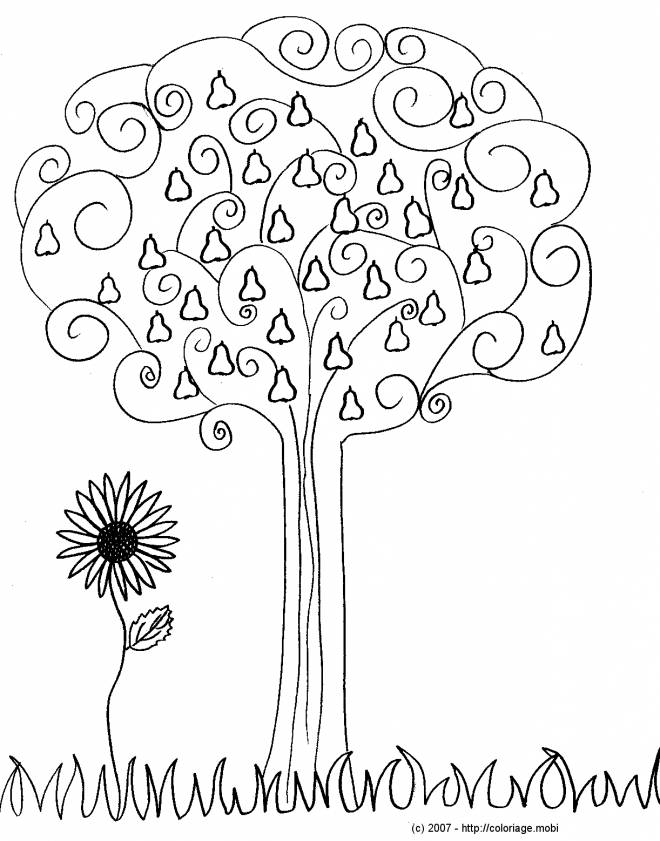 Free coloring and drawings Stylized Autumn Fruit Coloring page