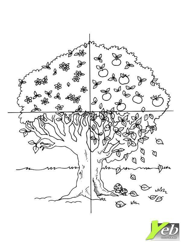 Free coloring and drawings Tree in Four Seasons Coloring page
