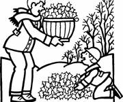 Coloring pages Tree without Leaves in Atuomne