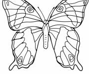 Coloring pages Beautiful Butterfly to cut out