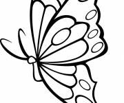 Coloring pages beautiful butterfly vector