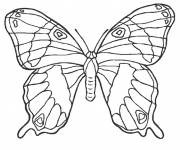 Coloring pages Beautiful stylized butterfly