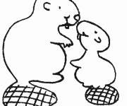 Coloring pages Beaver and his cub
