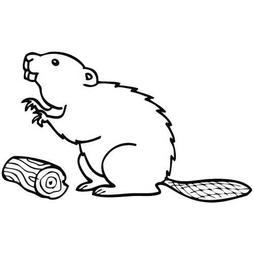 Free coloring and drawings Beaver and Wood on computer Coloring page