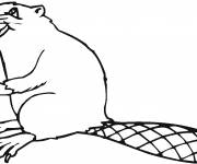 Coloring pages Beaver smiling online