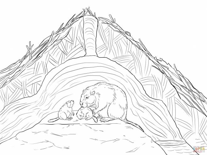 Free coloring and drawings Beavers at their house Coloring page