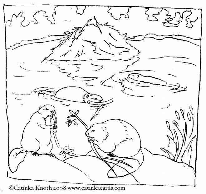 Free coloring and drawings Beavers in the wild Coloring page