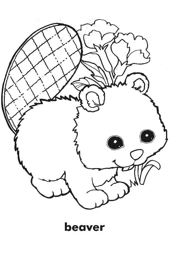 Free coloring and drawings Cute beaver Coloring page