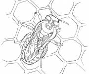 Coloring pages Bee Cells