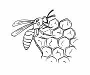 Coloring pages Bee on Cells