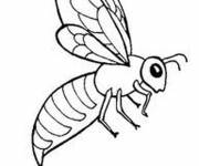 Coloring pages Stylized bee for coloring