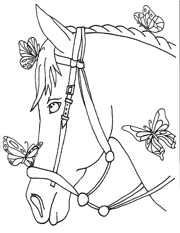 Free coloring and drawings A beautiful country horse Coloring page