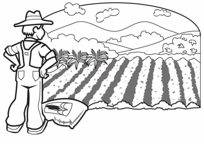 Free coloring and drawings A peasant in the countryside Coloring page