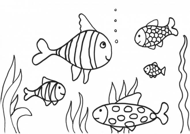 Free coloring and drawings Coral and Kind Fish Coloring page