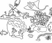 Coloring pages Coral and other sea creatures