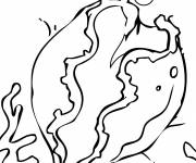 Free coloring and drawings Coral coloring Coloring page