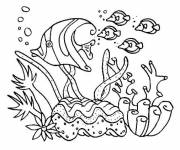 Coloring pages Coral for decoration