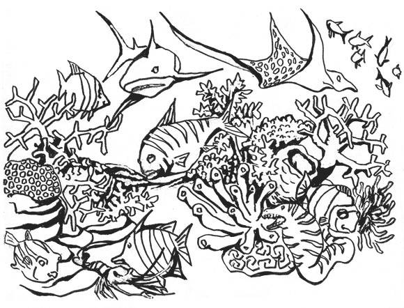 Free coloring and drawings Coral sea fish in vector Coloring page