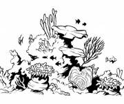 Coloring pages Coral Vector Silhouettes