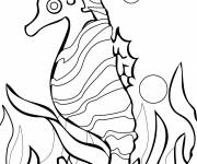Coloring pages Corals and seahorse vector