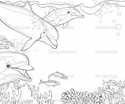 Coloring pages Dolphins and Coral